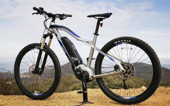 Migliori Bici Elettriche E-Bike sui 600 euro | Quale Comprare | 2021